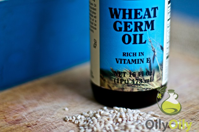 wheat germ uses