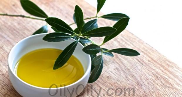 Olive oil vs canola oil for Coconut oil vs fish oil