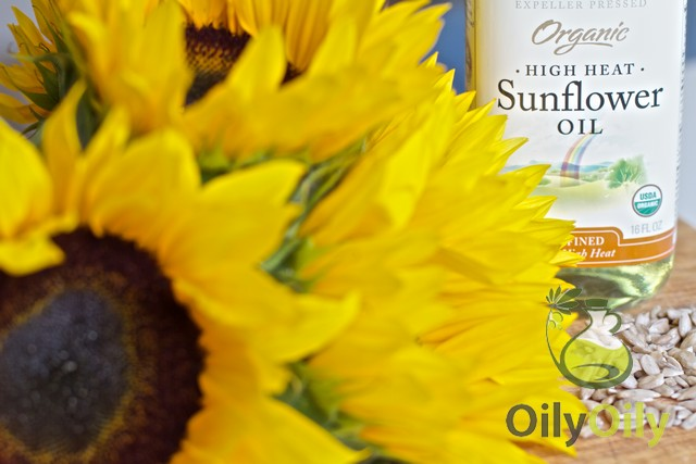 sunflower oil hair