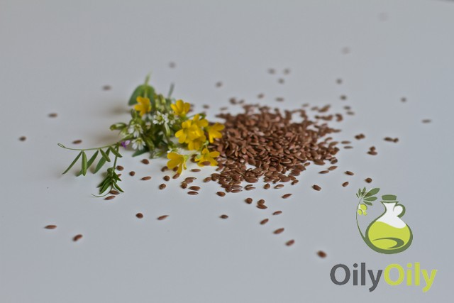 flaxseed oil vs fish oil