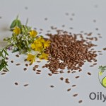 Flaxseed Oil and Weight Loss