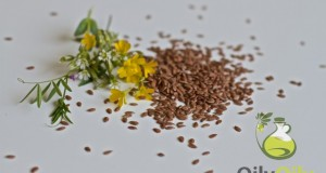 flaxseed oil weight loss