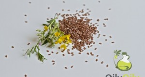 flaxseed oil acne