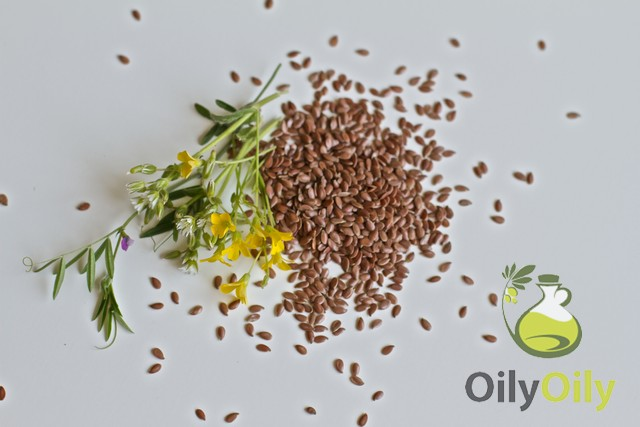 flaxseed oil bodybuilding