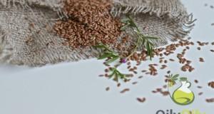 flaxseeds vs flaxseed oil