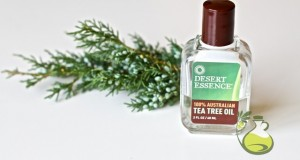 tea tree oil toner