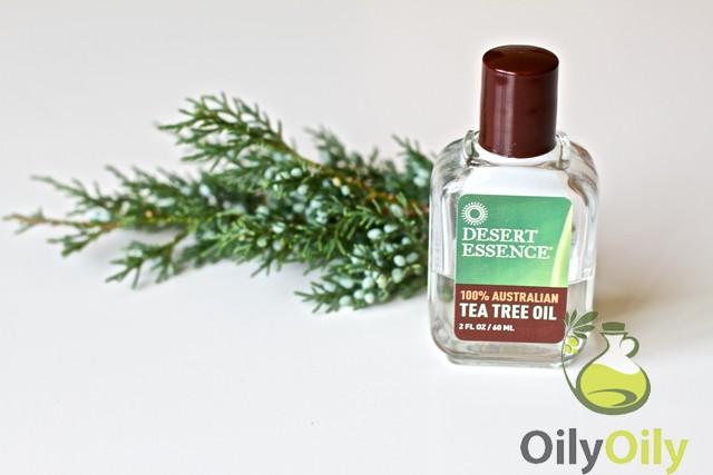 tea tree oil toner