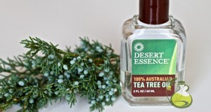 tea tree oil for tinea versicolor