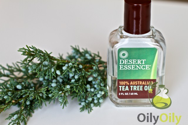 tea tree oil for tinea versicolor