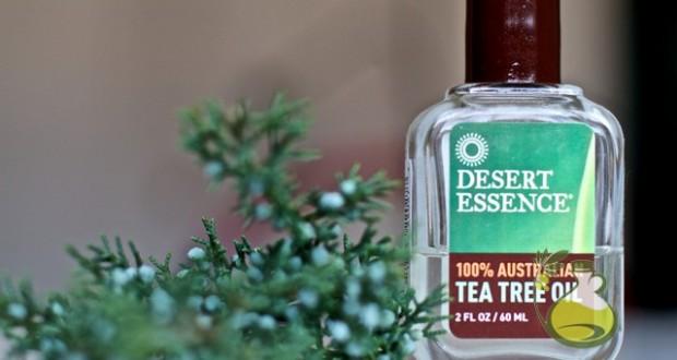 Amazing Benefits of Tea Tree Oil for Cold Sores - Oilypedia.com