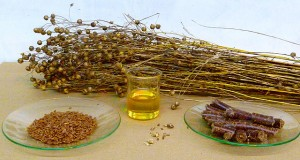 cooking with flaxseed oil