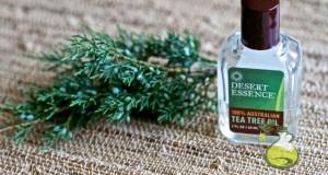 tea tree oil toothpaste