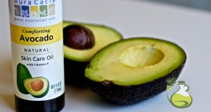 avocado oil recipes