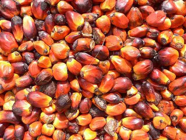 red palm oil for skin