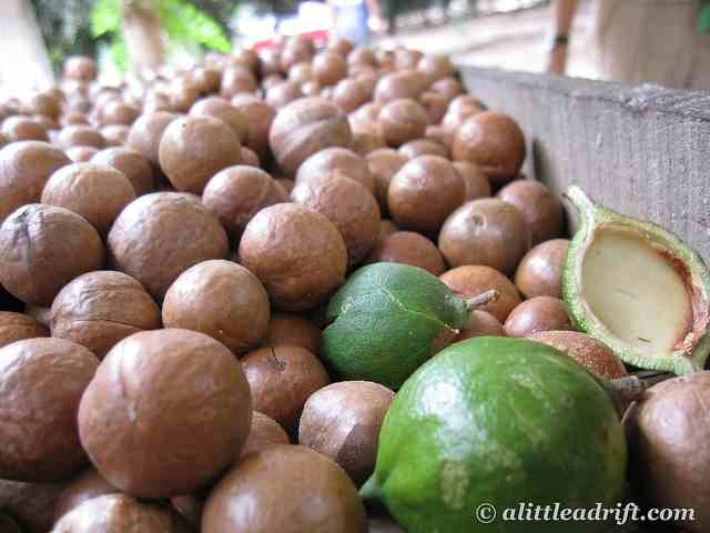 macadamia nut oil for hair