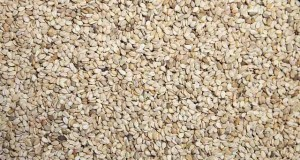 what is sesame oil