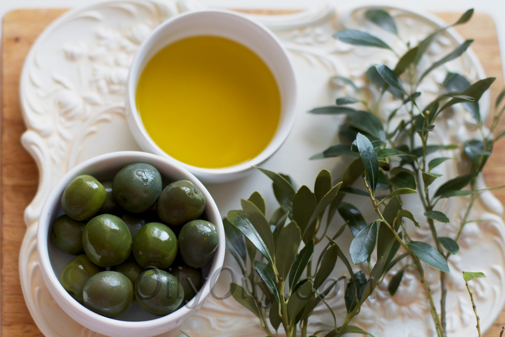 Ozonated Olive Oil How Can It Help Oilypedia Com